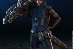 Hot Toys - AIW - Groot & Rocket collectible set_PR15
