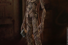Hot Toys - AIW - Groot & Rocket collectible set_PR9